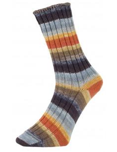 Pro Lana Golden Socks Tannheim 5 190.01