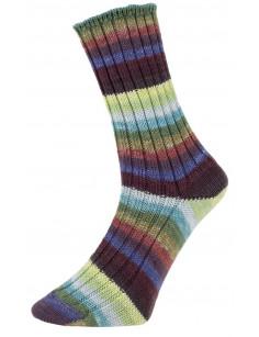 Pro Lana Golden Socks Tannheim 5 190.03