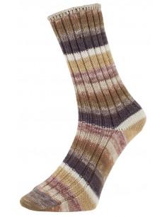 Pro Lana Golden Socks Tannheim 5 190.08