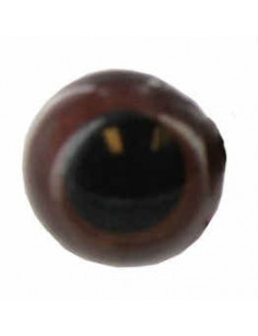 Yeux d'animeaux 20 mm brun